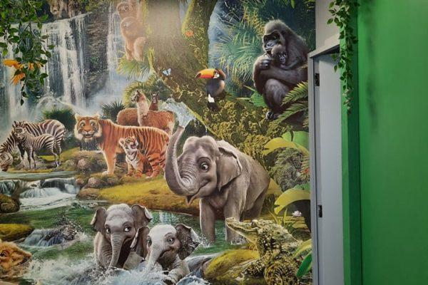 Salle Jungle kids corner